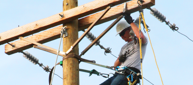 a lineman repairs electric lines running along a telephone pole